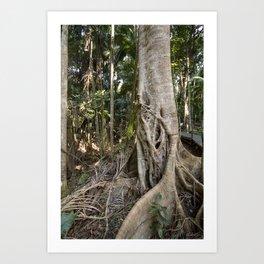 Rainforest Majesty Art Print