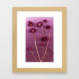 Purple Chia Framed Art Print