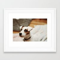 jack daniels Framed Art Prints featuring jack by vaughan granberg
