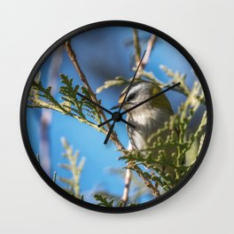 Goldcrest Wall Clock
