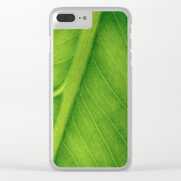 Macro photo of green leaf. Concept nature and ecology. Clear iPhone Case
