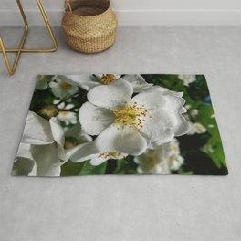 Multiflora Rose - White 1 Rug