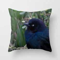 Black Bird Throw Pillow