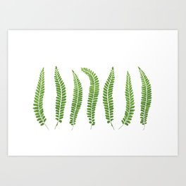 Fern leaves Art Print