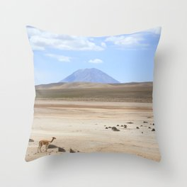 Colca, Arequipa Throw Pillow