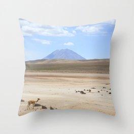 Colca, Arequipa Throw Pillow