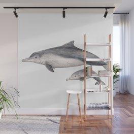 Australian humpback dolphin (Sousa sahulensis) with baby Wall Mural