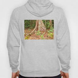 A firm grip on mother earth Hoody