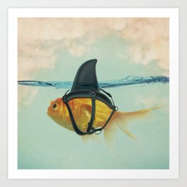 Goldfish with a Shark Fin Art Print