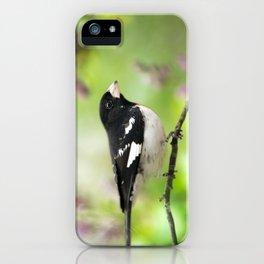 Spring Songbird iPhone Case