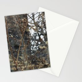 Double Exposures, January Series 4 Stationery Cards