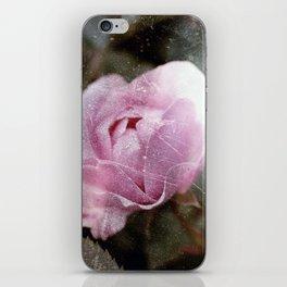 Dreaming Rose iPhone Skin
