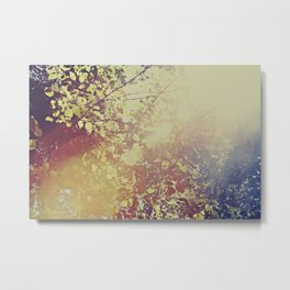 Afternoon Leaves Metal Print