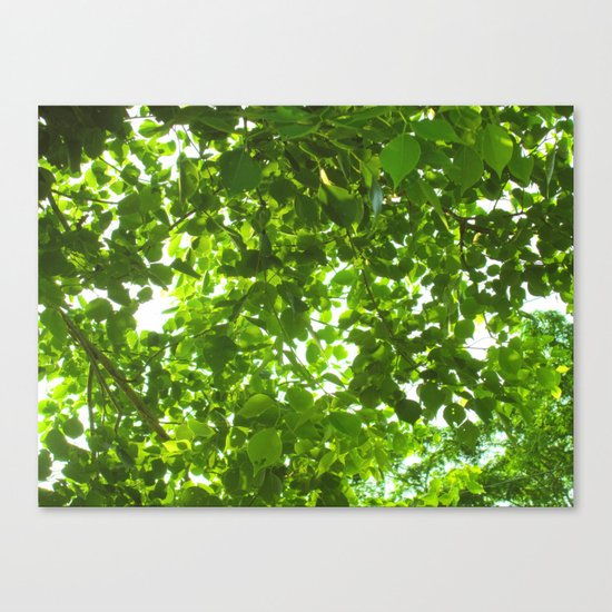 Green #Nature Canvas Print