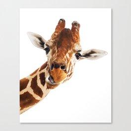 Silly Giraffe // Wild Animal Portrait Cute Zoo Safari Madagascar Wildlife Nursery Ideas Decor Canvas Print