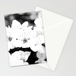 resurection Stationery Cards