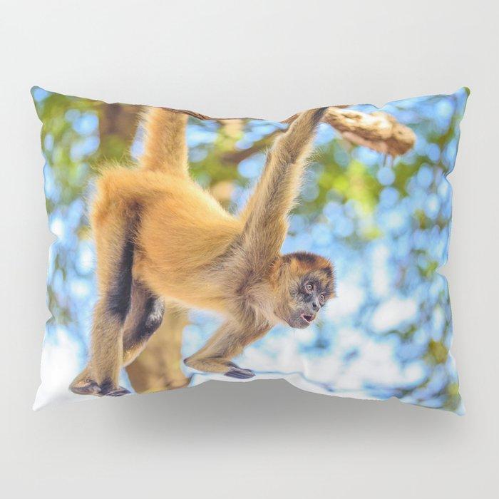 Just Hanging Around Pillow Sham