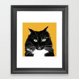 Black and White Cat on Gold Framed Art Print
