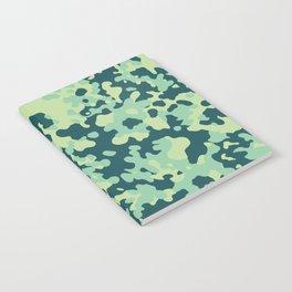CAMO02 Notebook