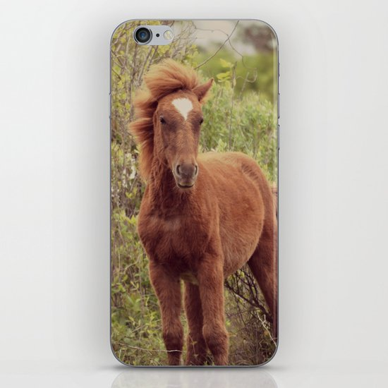 If God made anything more beautiful... iPhone & iPod Skin