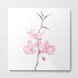 pink cherry blossom macro 2018 Metal Print