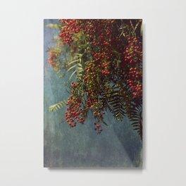 Grunge garden berries Metal Print