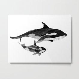 A swim together (black and white) Metal Print