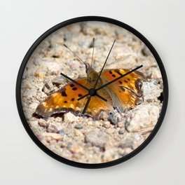 Watercolor Butterfly, Hoary Comma Butterfly 01, Wild Basin, RMNP, Colorado, Along the Trail Wall Clock