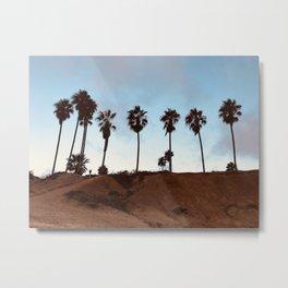 San Diego Palms Trees Metal Print