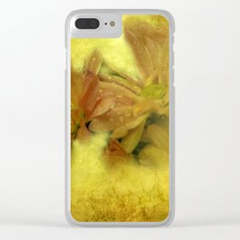 morning dew and grungy texture -1- Clear iPhone Case