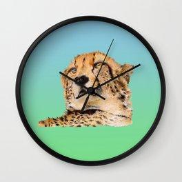 Season of the Big Cat - Cheetah at Rest Wall Clock