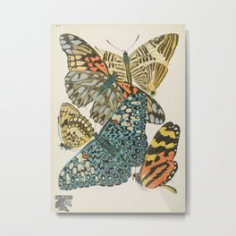 Butterfly Scientific Illustration by E.A. Seguy, 1925 #12 Metal Print