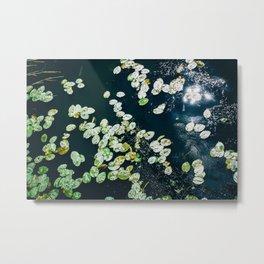 Lily Pads - Lake Water - Sun Reflection Metal Print