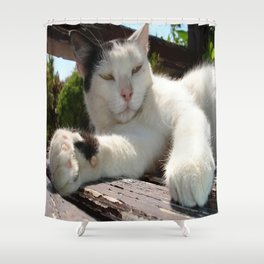Black and White Bicolor Cat Lounging on A Park Bench Shower Curtain
