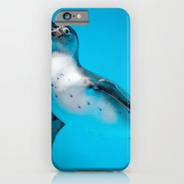 LOW LIGHT PHOTOGRAPHY OF WHITE AND BLACK PENGUIN iPhone Case