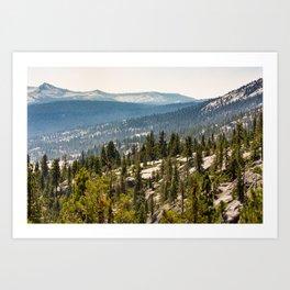 High Sierra Forest Art Print