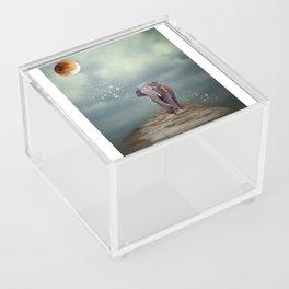 Dreamer Acrylic Box