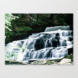 Water Creek Canvas Print