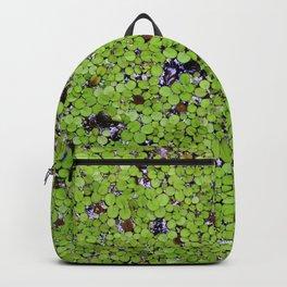 Green Pond Coverage Backpack