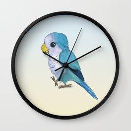 Very cute blue parrot Wall Clock