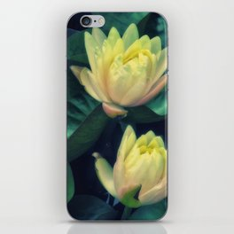 Yellow Lotus Flowers iPhone Skin