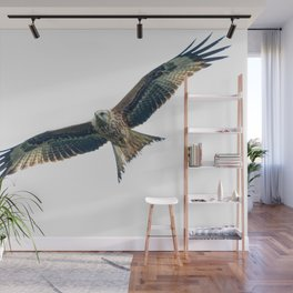 Red Kite Wall Mural