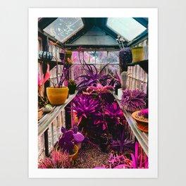 Botanical Zen Art Print