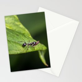 Planning for Winter Stationery Cards