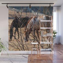 Horses Grazing Wall Mural