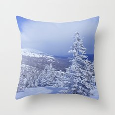 Winter day 27 Throw Pillow