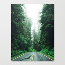 Driving through Washington Canvas Print