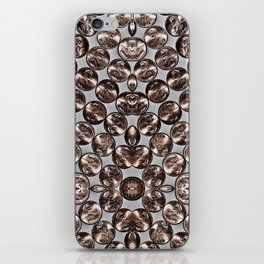 Pennies iPhone Skin