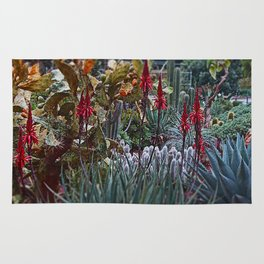 GDN 3 (The upper-class succulent society) Rug
