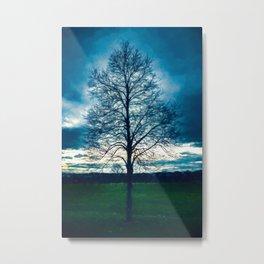 A Lone Tree in Winter Metal Print